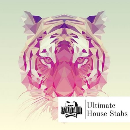 Ultimate House Stabs - сэмплы аккордов для House и Techno